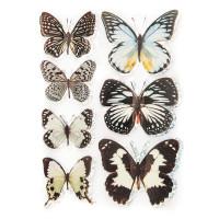 Большие бабочки